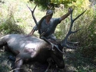 Dad's 6x6 Bull Elk Muzzleloader Hunt