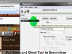 NInja Saga Cheats January 2011 Using Cheat Engine - ...